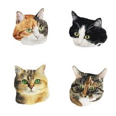 Watercolor collection of cute cat