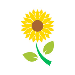 sun flower icon isolated vector