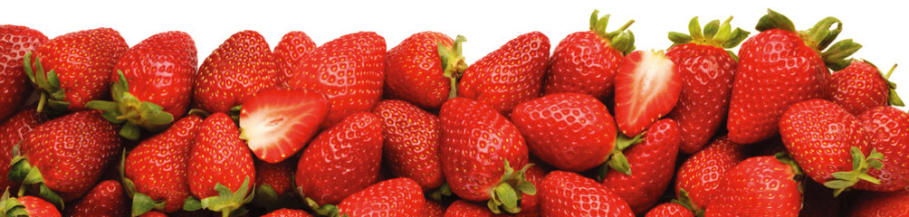 LINE OF STRAWBERRIES