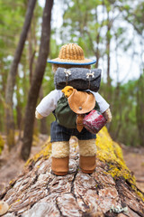 Small Backpack, Sleeping Mat, Coffee Mug - Teddy Bear Hiker / Cute little teddy bear backpacker travels with vintage miniature equipment along tree trunk through forest