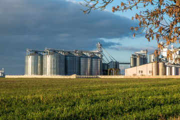 silver silos on agro-processing plant for processing and storage of agricultural products, flour, cereals and grain