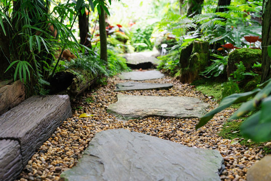 Stone walkway in garden step stone in gravel