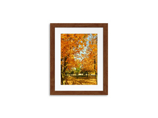 Frame mock up with colorful autumn motif picture