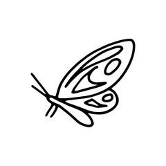 butterfly moth insect icon drawing isolated object on white background