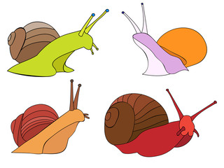 vector, on white background, set of snails