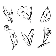 Set of sketch flowers, leaves and plants with black outlines isolated on white background. Hand-painted flowers.