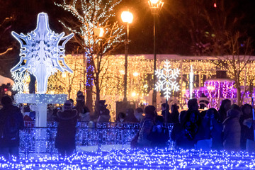 大通公園のホワイトイルミネーション / 北海道 札幌市の観光イメージ