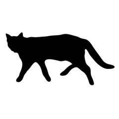 Black silhouette of a walking cat.