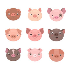 Cute piggies collection. Vector illustration of funny cartoon pigs faces. Isolated on white.