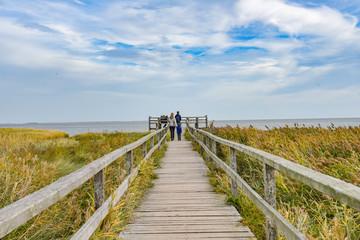 Weg zum Wattenmeer auf der Insel Amrum