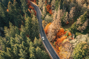Winding mountain road trough the forest. Aerial view.