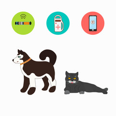 Pet services - set of vector icons, pictograms. Vector cartoon illustration.