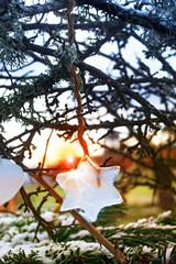 Stern aus Eis vor romantischem Sonnenuntergang