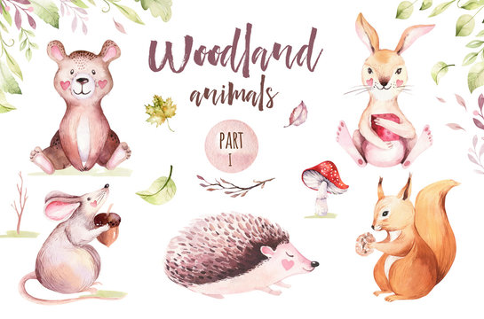 Cute baby animal nursery mouse, rabbit and bear isolated illustration for children. Watercolor boho forest drawing squirrel, watercolour, hedgehog image Perfect for nursery posters, patterns