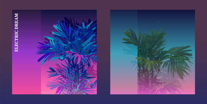 tropical palm background 2 type