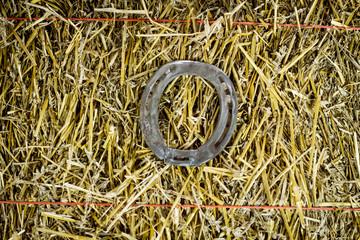 Letter O Steel Horseshoe on Straw