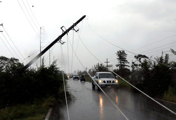 Fallen electricity pole is seen along a highway outside the town of Escuinapa near the southern tip of Sinaloa state after Hurricane Willa hit