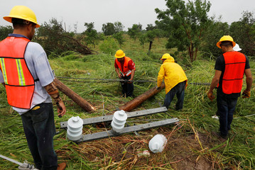 Workers works on a fallen electricity pole along a highway outside the town of Escuinapa near the southern tip of Sinaloa state after Hurricane Willa hit