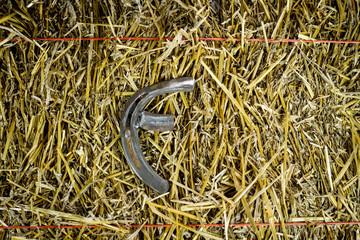 Letter F Steel Horseshoe on Straw