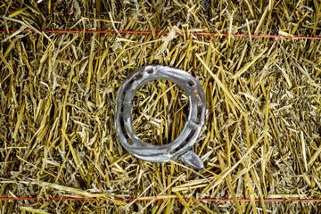 Letter Q Steel Horseshoe on Straw