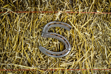 Letter S Steel Horseshoe on Straw