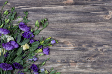Bunch of purple and beige eustoma flowers (prairie gentian, lisianthus) on wooden background. Beautiful floral mockup. Top view, flat lay.