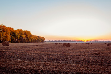 Fotobehang Platteland View of autumn field with haystacks at sunset. Ukrainian landscape