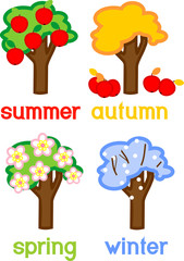 Four seasons apple tree isolated on white background. Life cycle of tree with titles