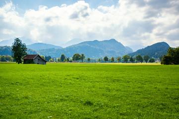 Zielona łąka z domkiem