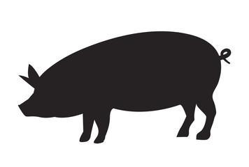 Vector pig silhouette side retro vintage template. Pork animal icon background. Pig farm