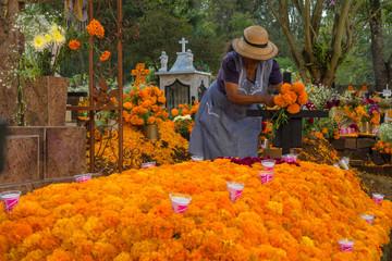 La señora adorna la tumba con flores de cempasúchil el día de los muertos.