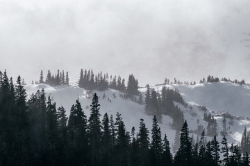 Spoed Fotobehang Ochtendstond met mist Severe winter weather in the Rocky Mountains, Colorado