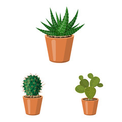 Isolated object of cactus and pot sign. Set of cactus and cacti stock symbol for web.