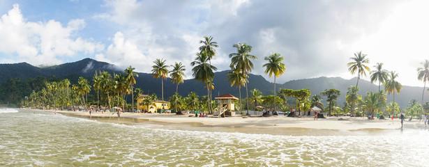 Ocean and Palm Trees at Maracas Beach in Trinidad and Tobago, Caribbean.