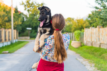 Cute teenage girl hugging a german shepherd puppy. Cute young woman with a puppy dog in nature.