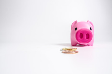 Piggy Bank Pink on white background.