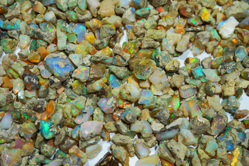 opal mineral collection