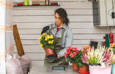Young woman working in Gardening Center