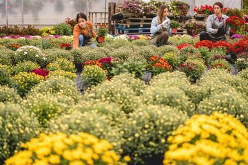 Working in garden center