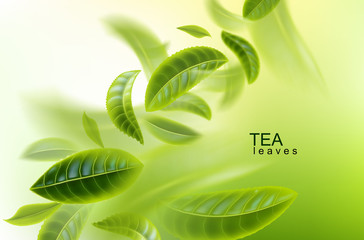 Green tea background. Tea leaves whirl in the air. Tea leaves in motion. Element for design, advertising, packaging of tea products Vector illustration.