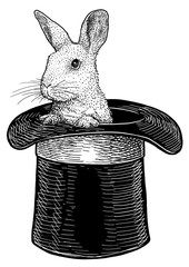 Rabbit in hat illustration, drawing, engraving, ink, line art, vector