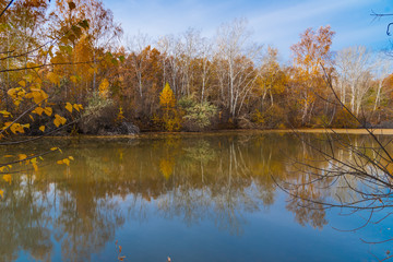Beautiful autumn landscape - trees reflected in the water of a forest lake