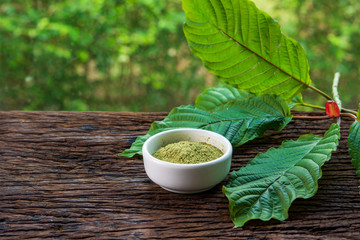 Mitragynina speciosa or Kratom leaves with powder product in white ceramic bowl on wood table and blurred nature background Fototapete