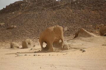A stone that looks like an elephant in Sahara Desert