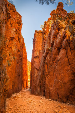 Standley Chasm,Central Australia, Northern Territory, Australia