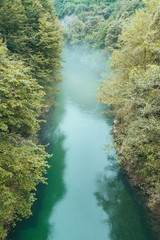 Haze above water among green trees
