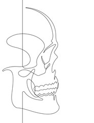 Human Skull Continuous Vector Line Art Illustration II