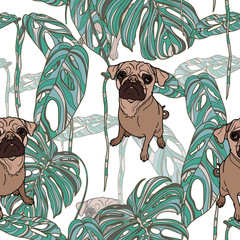 Pug and tropical leaves.
