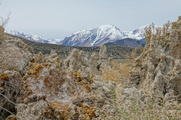 CLOSE UP: Tufa towers sticking out of the lake beneath the snow capped mountains