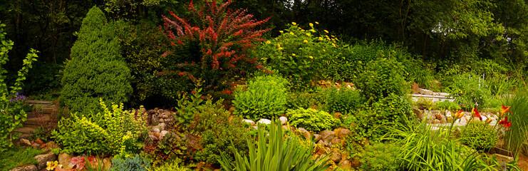 Yucca, stonecrop, hibiscus, daylily, holly, bush, cinquefoil, ilex, potentilla, berberis, barberry, sedum, thuja in the rock garden.